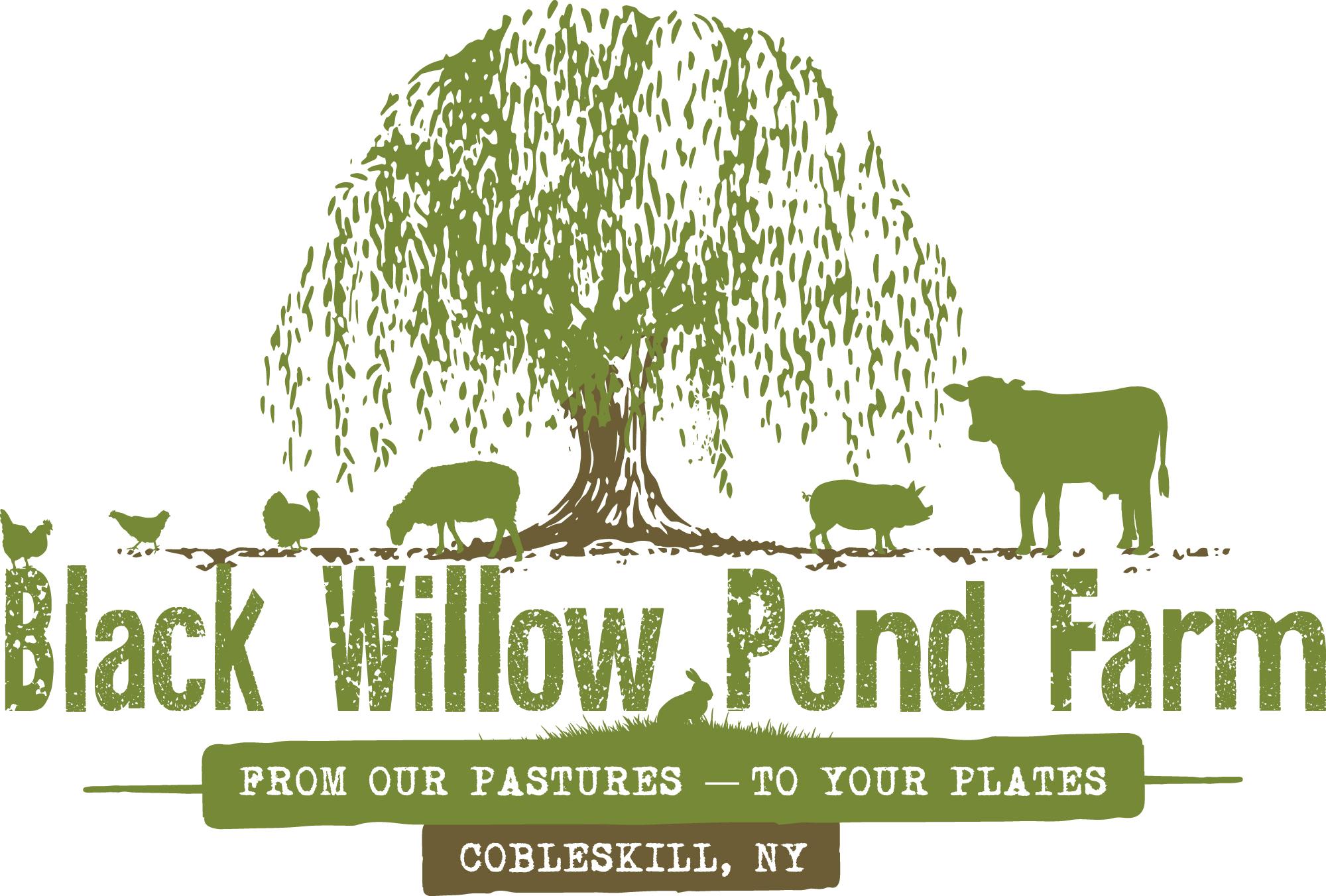 Black Willow Pond Farm