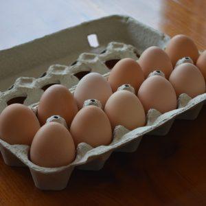 One Dozen Large Eggs